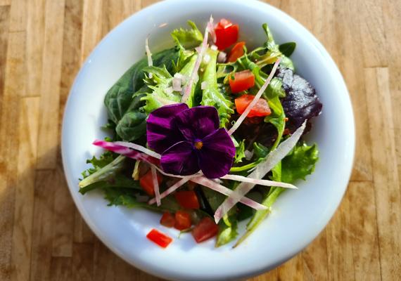 Le Méli-Mélo de Salade